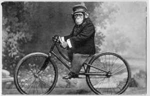 monkey_on_bicycle_vintage