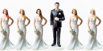 polygamy-340x170