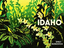 Idaho novel